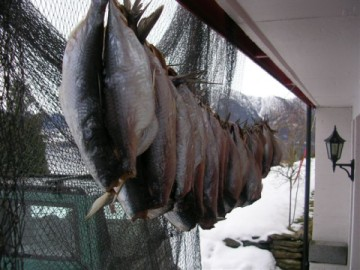fish-drying
