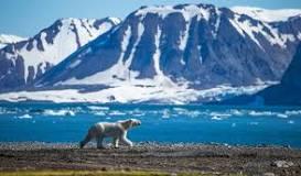 """""""spitsbergen"""""""