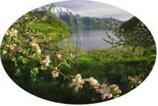 sognefjorden-oval